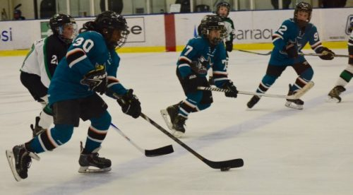 San Jose Jr. Sharks 10U