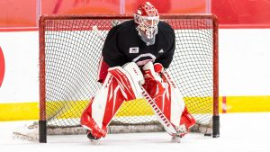 Thomas Greiss brings a large body of NHL work into the Red Wings crease this 2020-21 season